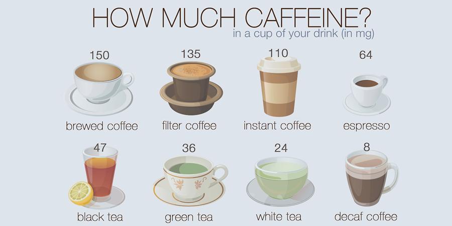 Physiology of Coffee: 5th Perspective | Terroir de café