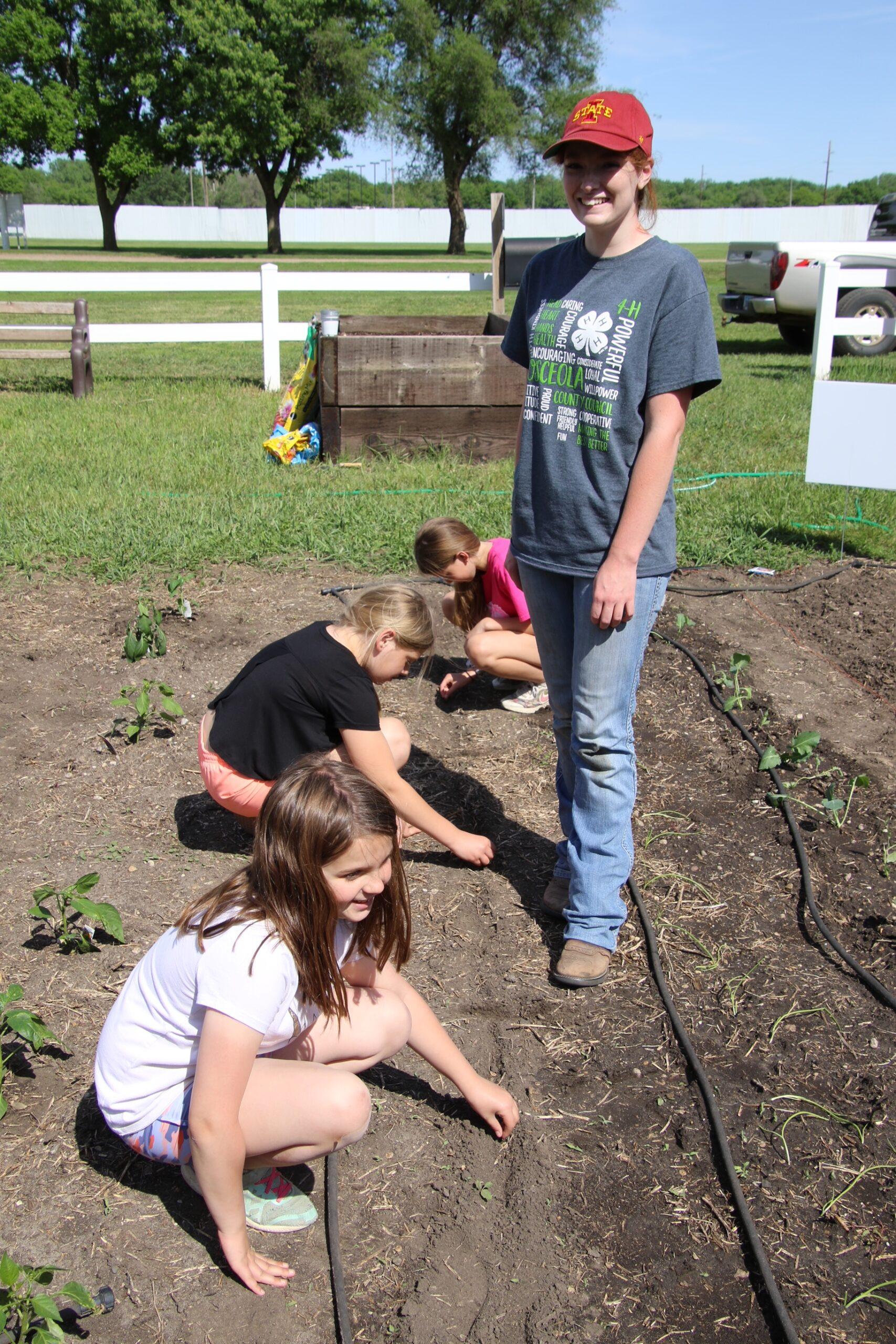 Alex watching 3 girls plant carrots