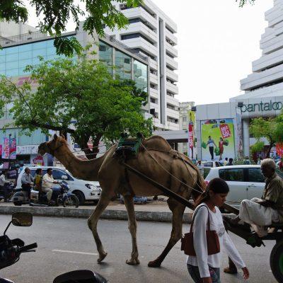 Ahmedabad y Pune, India