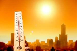 Ondas de calor poderão ser mortais para 48% da população até 2100
