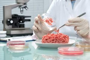 Revolução alimentar: alimentaremos comida de laboratório?