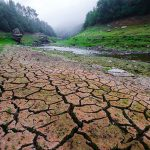 Falta de chuvas na Espanha provoca seca prolongada