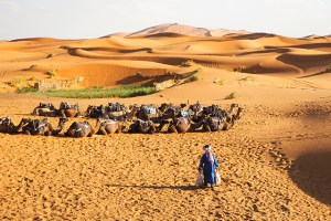 A tribo de Beni Guild, no Marrocos, conseguiu manter sua forma de vida tradicional graças ao uso da telefonia móvel.