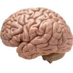 Estimulación magnética transcraneal para tratar la depresión
