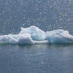 El valor del agua de lujo para el medio ambiente