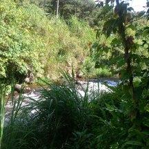 Río cerca del hostal