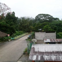 The view of the rain forest from our hostel in Misahuallí