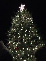 A giant, decorated Christmas tree