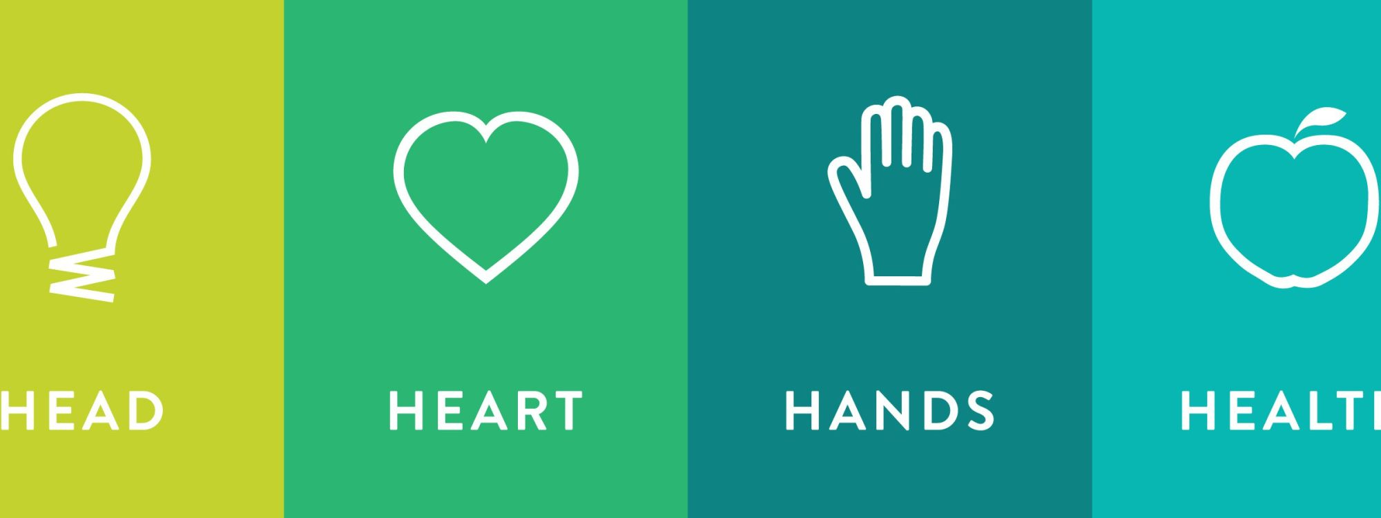 hight resolution of head heart hands health banner