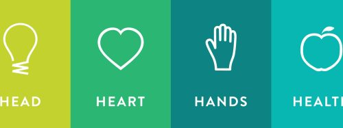 small resolution of head heart hands health banner
