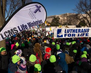 "Lime-green stocking caps identify participants with the LCMS and help them ward off the cold as they head down the National Mall toward the U.S. Supreme Court building during the 41st ""March for Life."" (LCMS Communications/Erik M. Lunsford)"