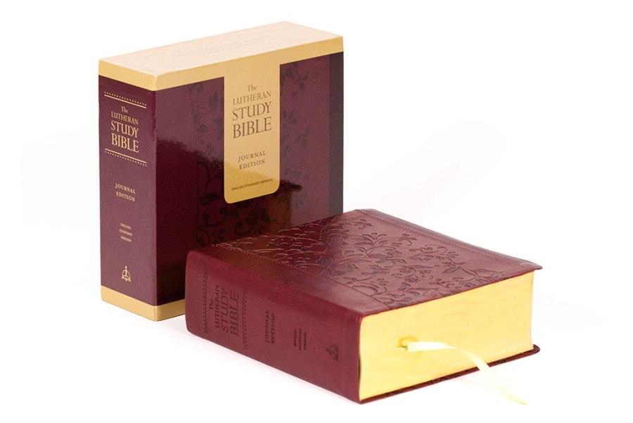 journal-bible-rpt-in