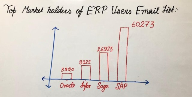 Top Market Holders Of ERP