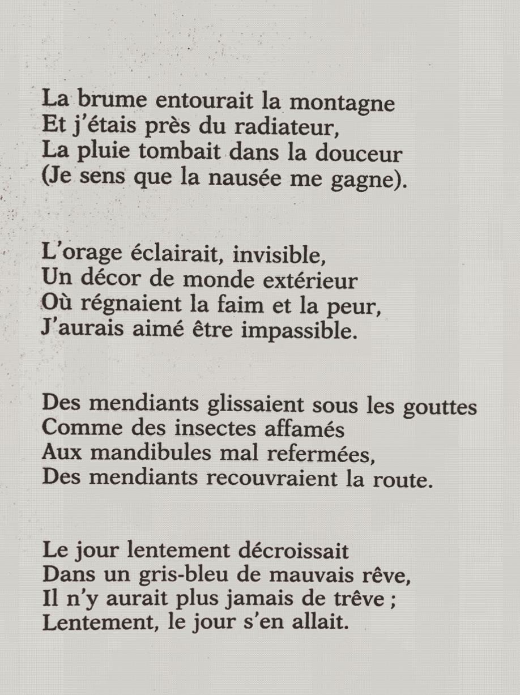 Brumes Et Pluies Baudelaire Analyse : brumes, pluies, baudelaire, analyse, Michel, Houellebecq, Poète, D'essence, Baudelairienne, Avenues, Fleurs