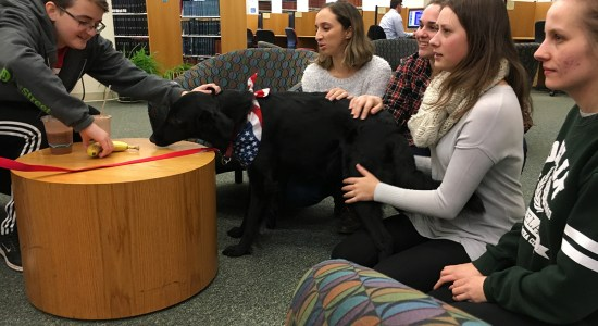 Corky visits students at Chang Library for Stressbusters!
