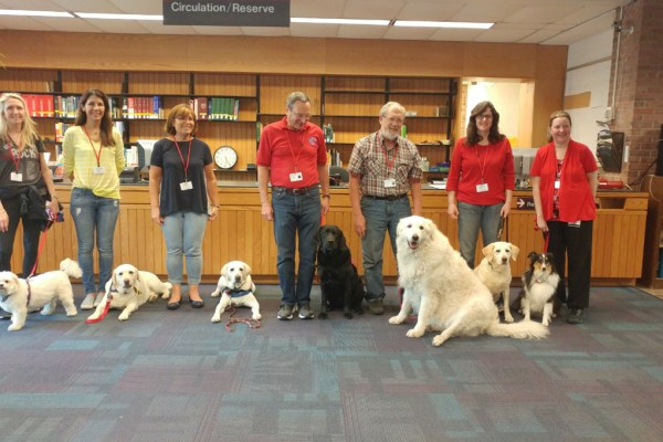 dogs at library