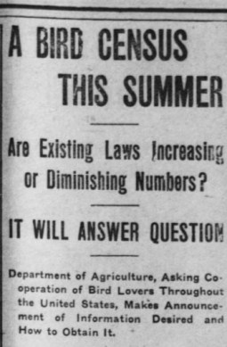 "Headline that reads ""A Bird Census This Summer"" followed by ""Are Existing Laws Increasing or Diminishing Numbers"" ""It Will Answer Questions"" and ""Department of Agriculture, Asking Cooperation of Bird Lovers Throughout the United States, Makes Announcement of Information Desired and How to Obtain It."