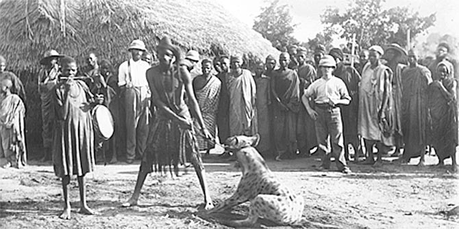 White missionaries meeting a medicine man with his 'trained hyena' in Pategi, c. 1902