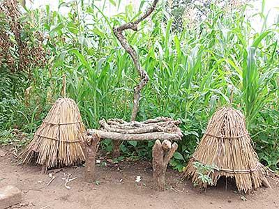 The Bobi subclan kac (ancestral shrine), Lawacci Boma, Pajok (Photo: Ryan O'Byrne)