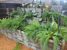 aménagement végétal