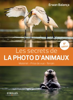 les-secrets-de-la-photo-d-animaux