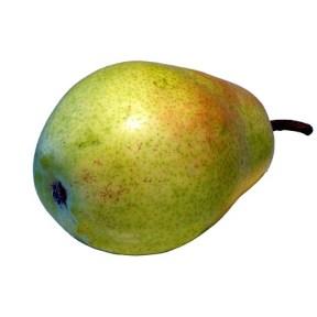pear-175255_640