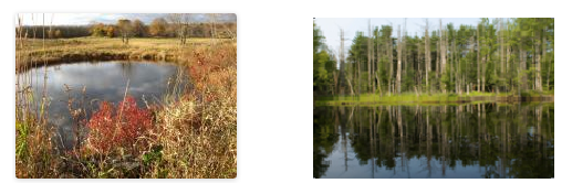 Pearson Farm in Mendon and conservation land in Sturbridge are examples of how CPA funds have helped preserve open space and historic places. Photo credit: Community Preservation Coalition