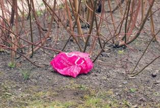 Oft landen Plastiktüten in der Natur: Foto: NABU/S. Hennigs