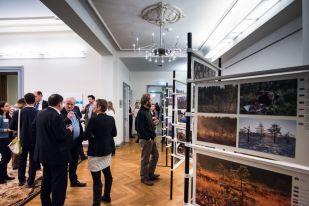 Moor-Ausstellung - Foto: Sebastian Hennigs