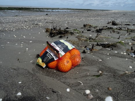 Schmackhafter Fund: Orangen am Strand von Trischen