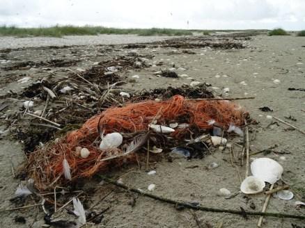 Dolly Ropes - Fasern der Scheuerfedern gelagen ins Meer. Dieser Plastikmüll wird, um das Fischnetz zu schonen, in Kauf genommen.