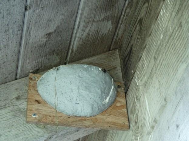 Erste Lehm- und Matschstückchen deuten auf eine Annahme der Nisthilfe hin.