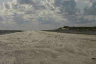 Sandverwehung am Südstrand (Foto: Tore J. Mayland-Quellhorst).