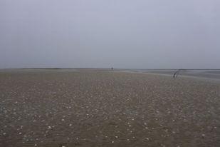 Ankunft bei Regen (Foto: Tore J. Mayland-Quellhorst).