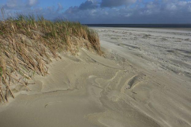 Winderosion am Dünenfuß (Foto: Tore J. Mayland-Quellhorst).