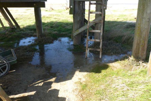 """""""Land-unter"""": Etwas Wasser steht unter der Hütte (Foto: Tore J. Mayland-Quellhorst)."""