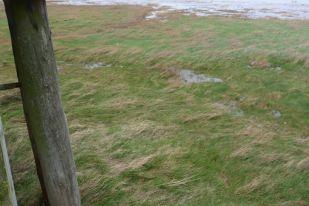 Das Wasser steht fast bis zur Hütte, gut das sie Stelzen hat (Foto:Tore J. Mayland-Quellhorst).