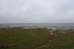 Salzwiese bei Hochwasser 50 cm über normal (Foto: Tore J. Mayland-Quellhorst).