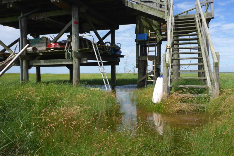 Wasser bei 70 cm über mittlerem Hochwasser unter Hütte (Foto: Tore J. Mayland-Quellhorst).