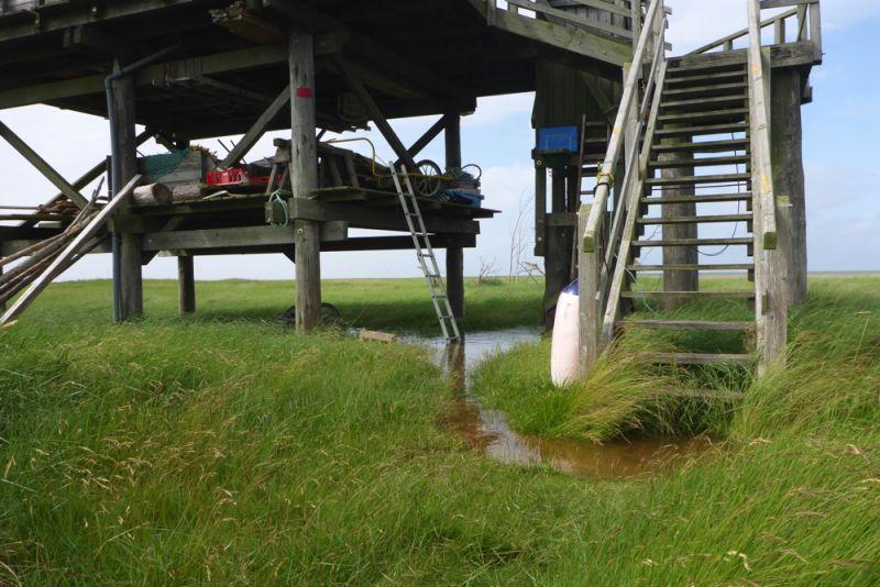 Wasser steht unter der Hütte (Foto: Tore J. Mayland-Quellhorst).