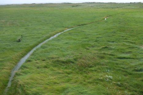Weg unter Wasser bei 70 cm über mittlerem Hochwasser (Foto: Tore J. Mayland-Quellhorst).