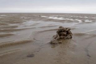 Kothaufen des Wattwurms (Arenicola marina) (Foto: Jonas Kotlarz)