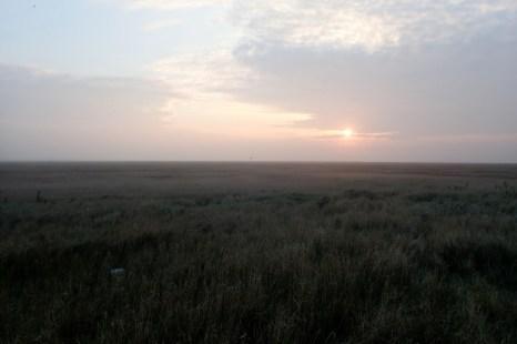 Sonnenaufgang zur Brutvogelkartierung (Foto: Jonas Kotlarz)