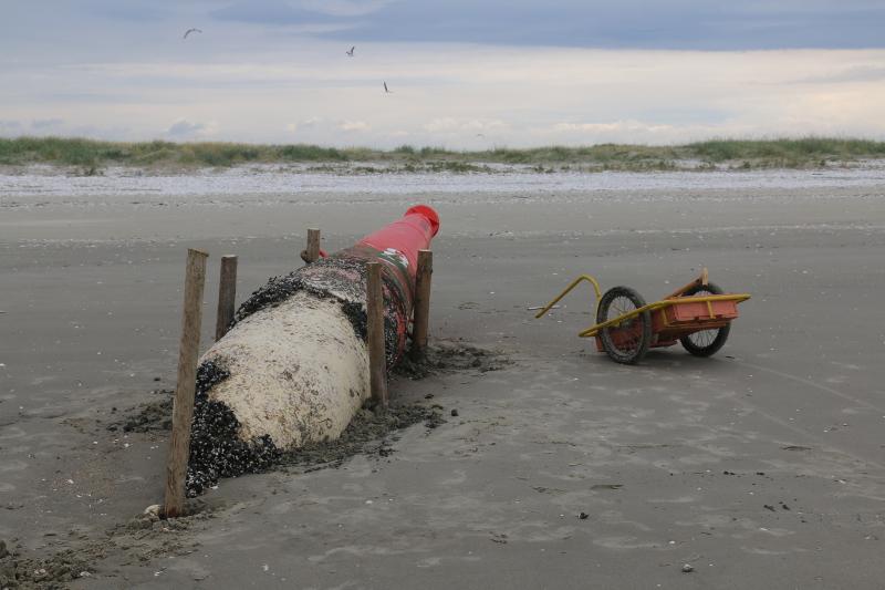 Gesicherte Fahrwassertonne am Nord-Strand Trischens (Foto: Jonas Kotlarz)