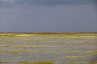 Wolkenstimmung und Hochwasser (Foto: Jonas Kotlarz)