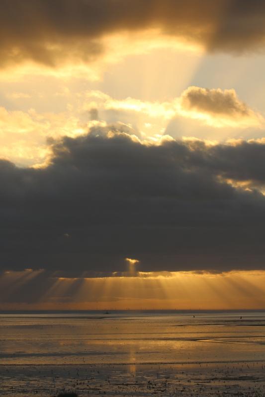 Die Sonne bahnt sich den Weg (Foto: Jonas Kotlarz)