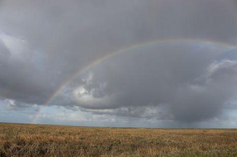 Regenbogen über Trischen (Foto: A. de Walmont)