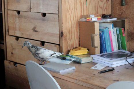 auf dem Schreibtisch