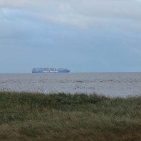 Containerschiff vor Trischen