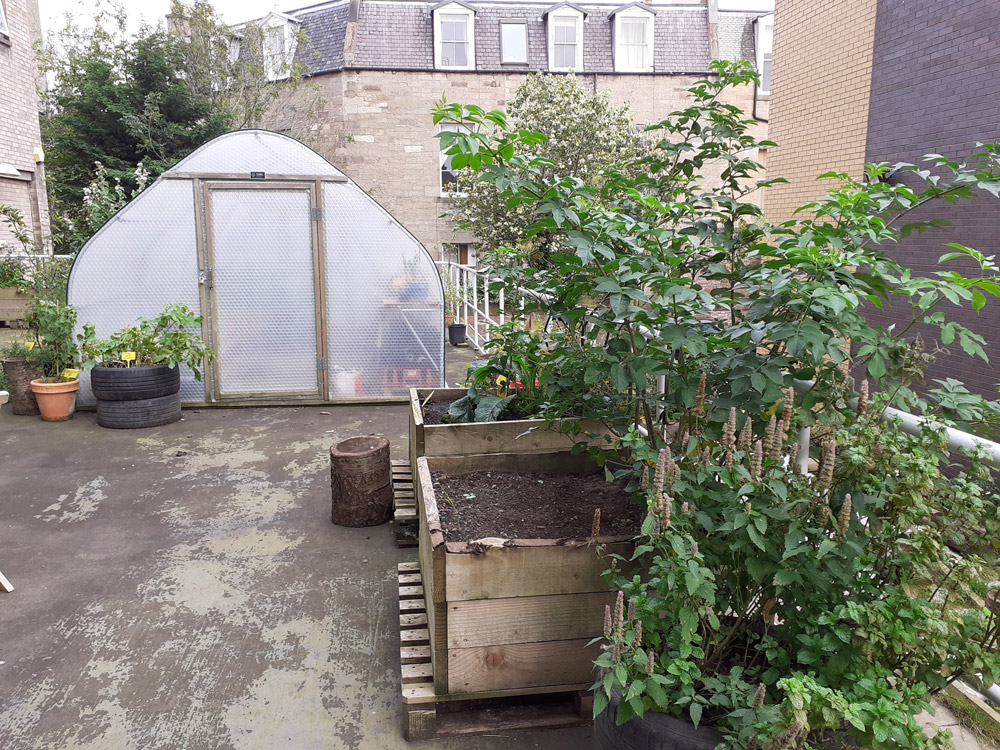 Rooftop allotment